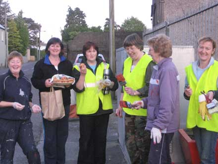 Millstreet Tidy Towns members at work