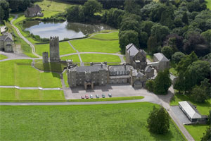 Drishane Castle from the Air