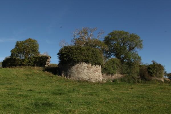 Dromsicane Castle