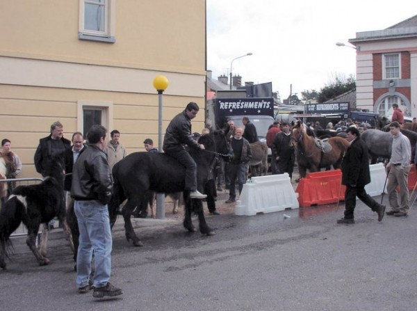 Horse Fair in Millstreet. March 2005