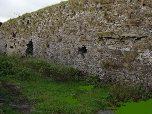 Dromsicane Castle as it now