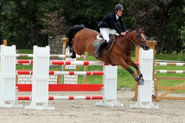 2010-08 Horse Show - 2u-600