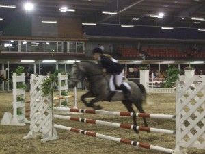 2010-08 Horse Show - Indoors Jumping