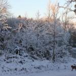 0441-ChristmasEveSnowScenes