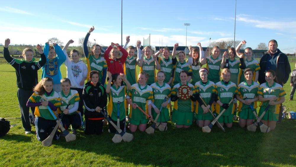 2010-11-The-Millstreet-Junior-Camogie-team-winners-of-the-Cork-Junior-B-Plate-Final-in-Cloughduv-on-Sunday_-PicGeraldine-Dennehy-1000