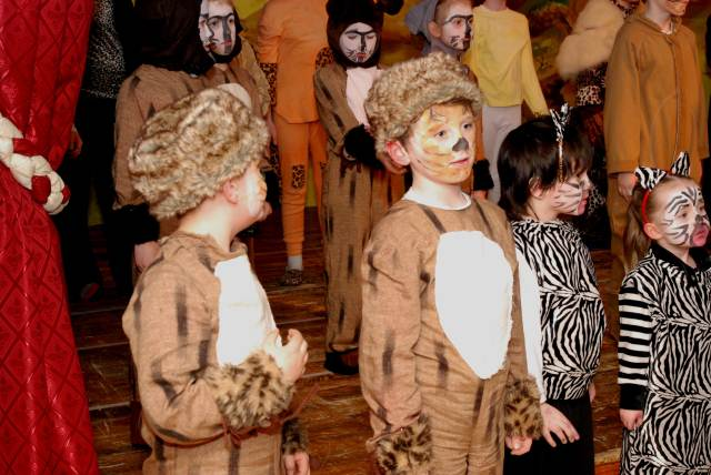 The Lion King photos for school 089