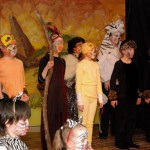 The Lion King photos for school 095