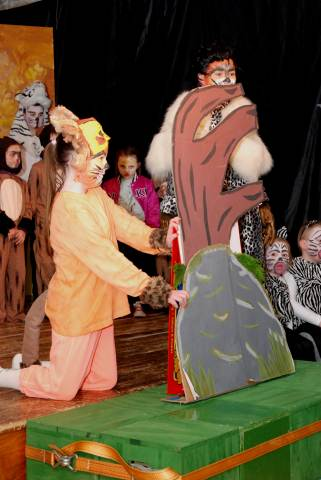 The Lion King photos for school 099