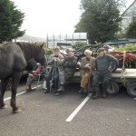 102September Horse Fair 2012 in Millstreet