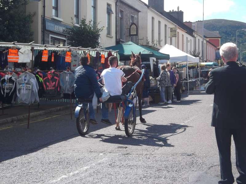212September Horse Fair 2012 in Millstreet