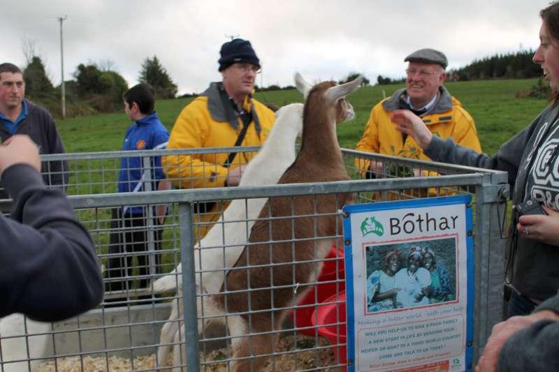 100Bóthar Event in Rathcoole 2012