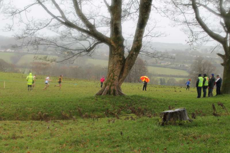 8County Cross Country Intermediate and Masters Championships 2012