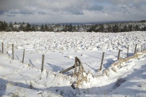 2013-03-12 Snow at the top of Togher, on the side of Mushera Mountain, from Fr.James McSweeney - www.2u.ie