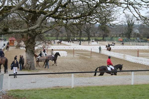 The very best of Equestrian Sport on view at this weekend's Welcome Show.   The Show also continues next weekend.  (S.R.)