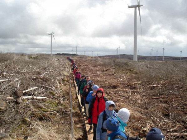 We thank Gordon O'Keeffe  for these magnificent picture of last weekend's Millstreet Walking Festival 2013.   Hear Gordon on our Radio Feature tonight at 10.  The scenes we're viewing here include Clara Mountain and the Wind Farm.  (S.R.)