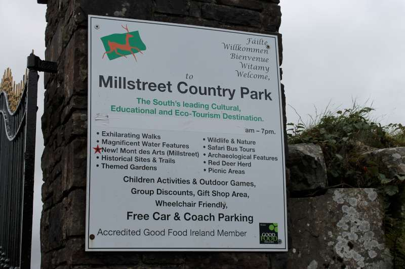 10Kite Fest at Millstreet Country Park 22nd Sept. 2013 -800
