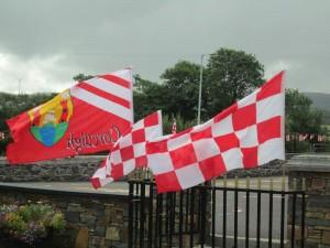2013-09-05 Kilcorney N.S. Rebels - flags