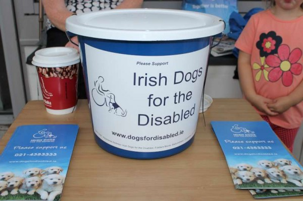 Irish Dogs for the Disabled in Millstreet - August 2013