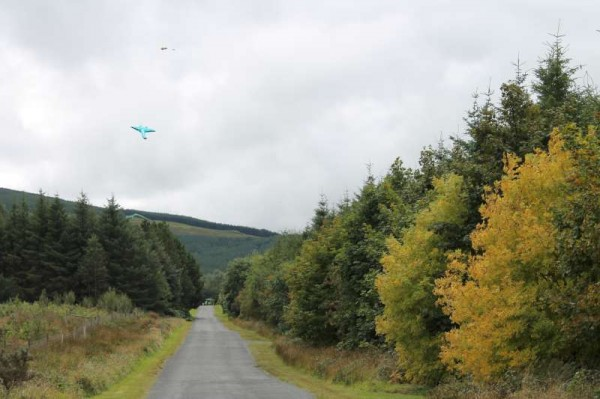 23Kite Fest at Millstreet Country Park 22nd Sept. 2013 -800