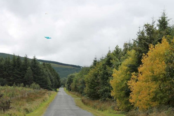 24Kite Fest at Millstreet Country Park 22nd Sept. 2013 -800