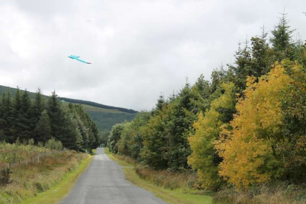 25Kite Fest at Millstreet Country Park 22nd Sept. 2013 -800