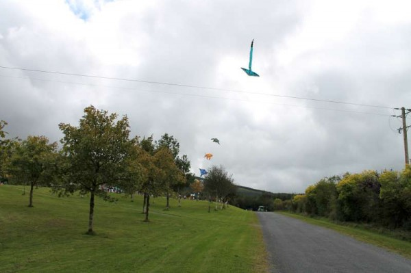 28Kite Fest at Millstreet Country Park 22nd Sept. 2013 -800