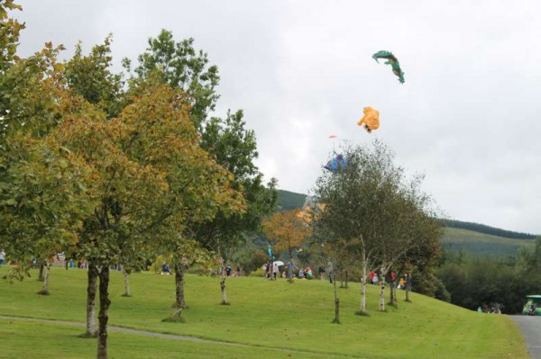 29Kite Fest at Millstreet Country Park 22nd Sept. 2013 -800