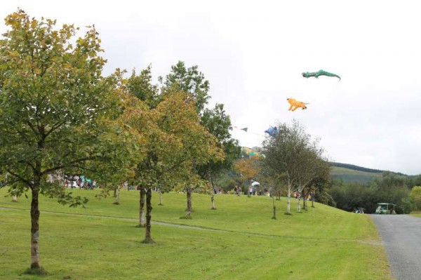 30Kite Fest at Millstreet Country Park 22nd Sept. 2013 -800