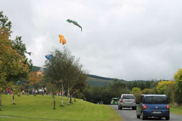 31Kite Fest at Millstreet Country Park 22nd Sept. 2013 -800