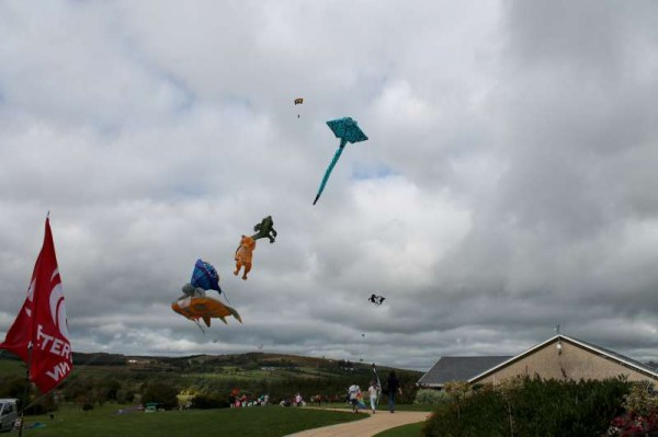 32Kite Fest at Millstreet Country Park 22nd Sept. 2013 -800
