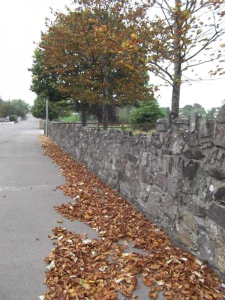 Clara Road, Millstreet