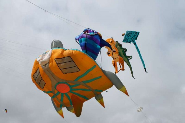 59Kite Fest at Millstreet Country Park 22nd Sept. 2013 -800