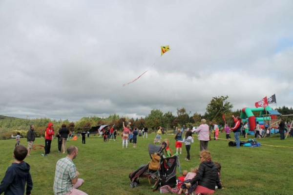 60Kite Fest at Millstreet Country Park 22nd Sept. 2013 -800