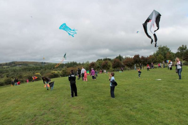 61Kite Fest at Millstreet Country Park 22nd Sept. 2013 -800