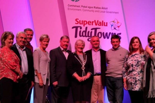 61Tidy Towns All-Ireland Awards 2013 at Helix, Dublin -800