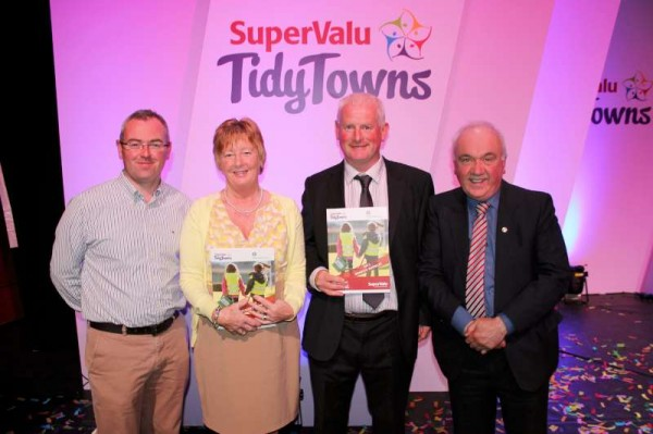 65Tidy Towns All-Ireland Awards 2013 at Helix, Dublin -800
