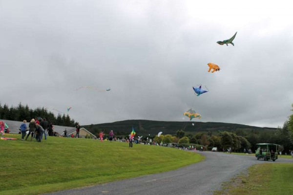 68Kite Fest at Millstreet Country Park 22nd Sept. 2013 -800