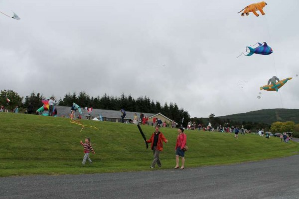74Kite Fest at Millstreet Country Park 22nd Sept. 2013 -800