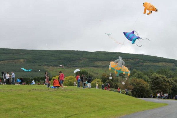 76Kite Fest at Millstreet Country Park 22nd Sept. 2013 -800