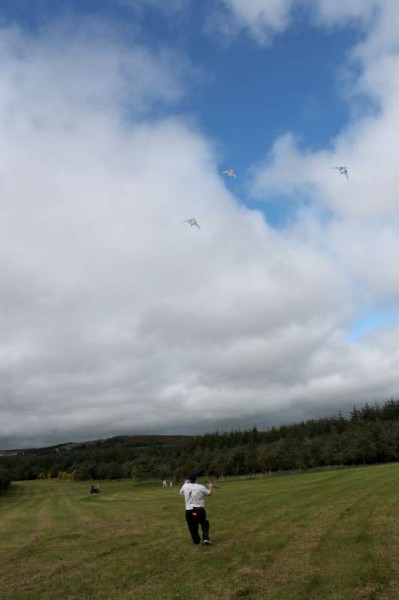 93Kite Fest at Millstreet Country Park 22nd Sept. 2013 -800