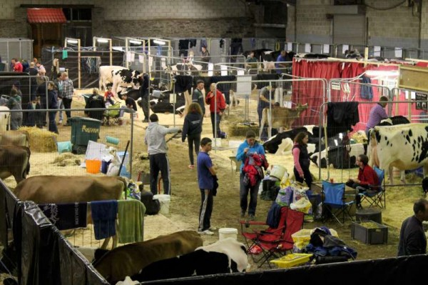331st National Dairy Show 2013 -800