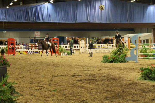 95Owners Pony & Young Riders Show 2013 -800