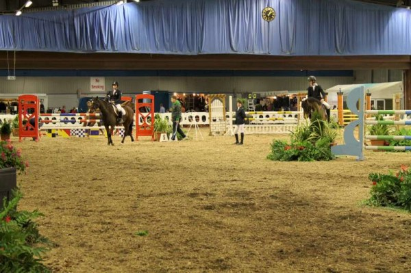 96Owners Pony & Young Riders Show 2013 -800