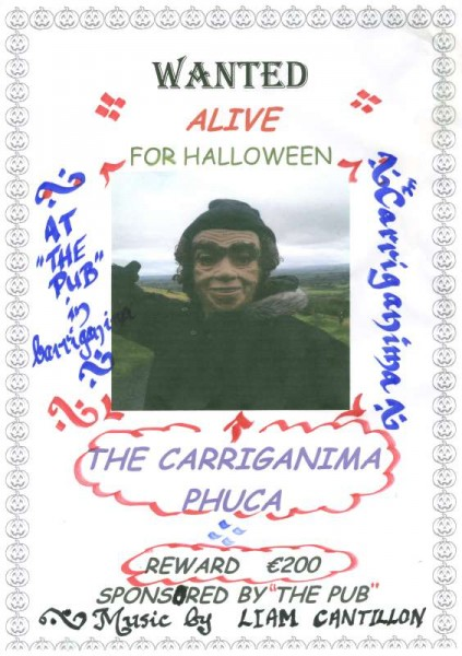 The annual Fancy Dress event will take place at The Pub in Carriganima this Sunday night.  Click on poster to enlarge.  (S.R.)