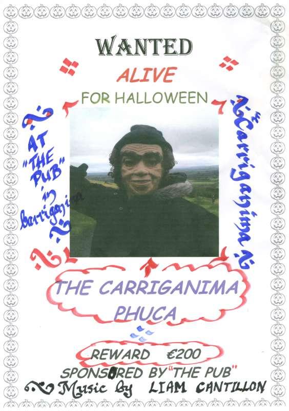 Carriganima Halloween Poster 2013