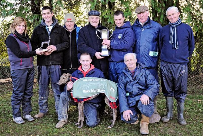 2014-01-04 The Winner of the Oaks Trial Stake at Millstreet Coursing Clubs Centenary meeting was Barrack Eile-800