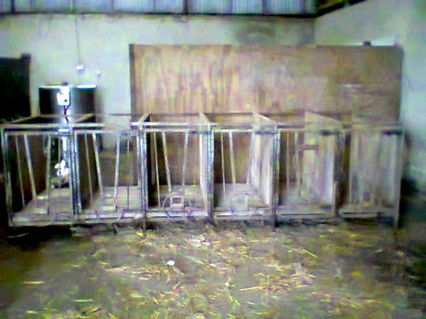 2014-01-17 Calf Pens for sale 13