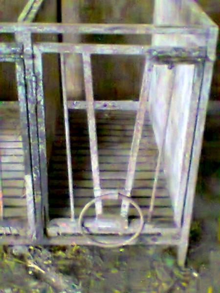 2014-01-17 Calf Pens for sale 15