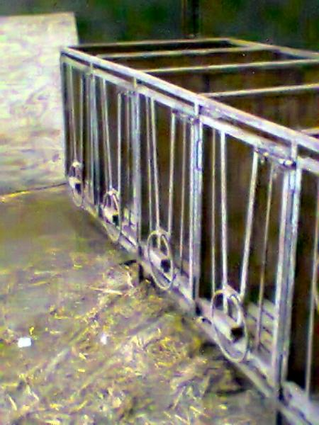 2014-01-17 Calf Pens for sale 16
