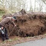 28Storm Darwin Aftermath in Millstreet 2014 -800
